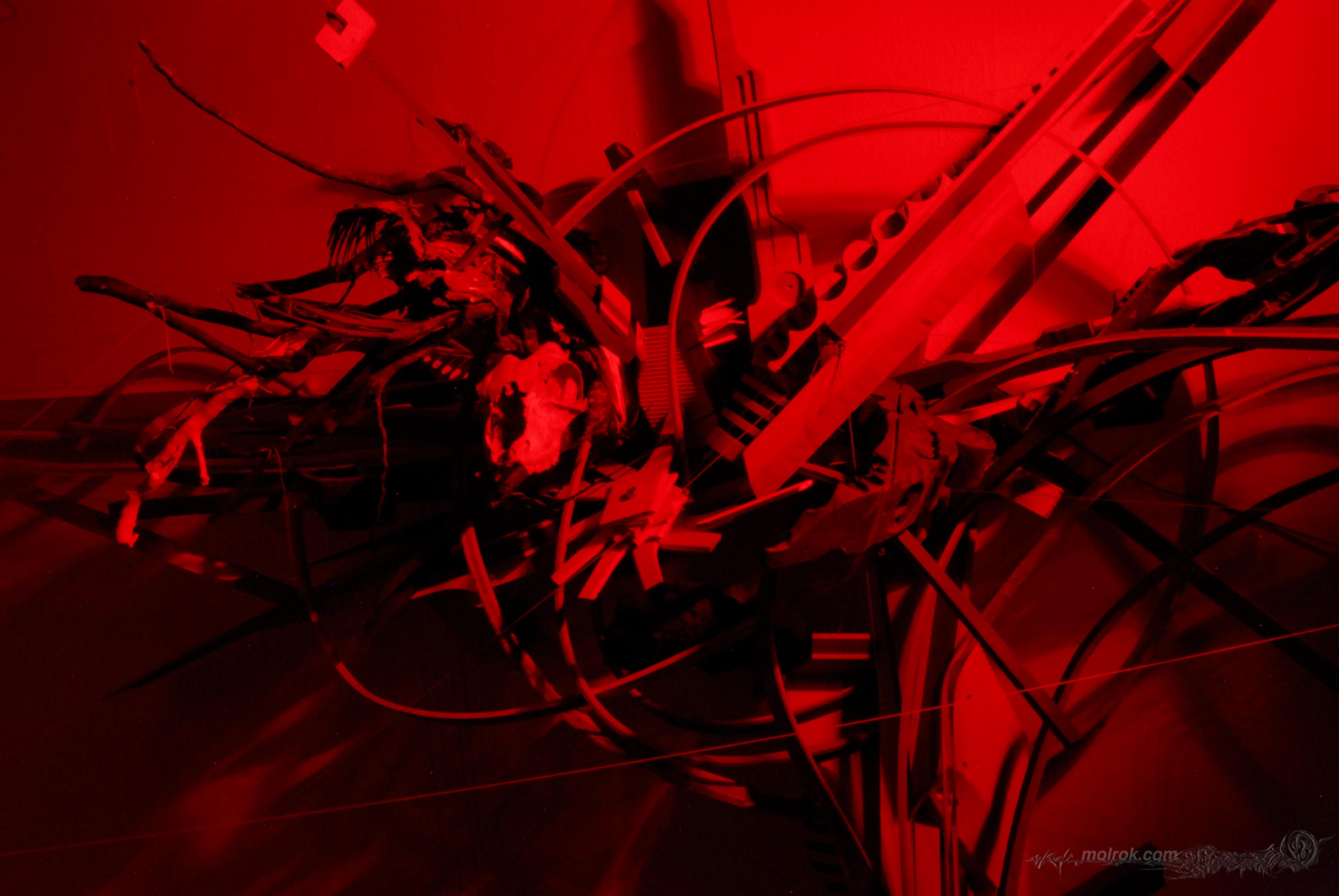 molrok-laser